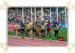 Sports in Commonwealth Games
